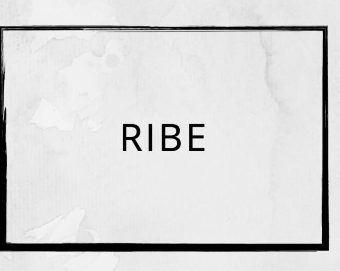 Pizza Tilbud Ribe