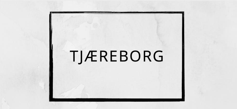 Pizza Tilbud Tjæreborg