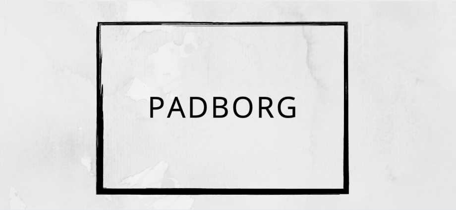Pizza tilbud Padborg