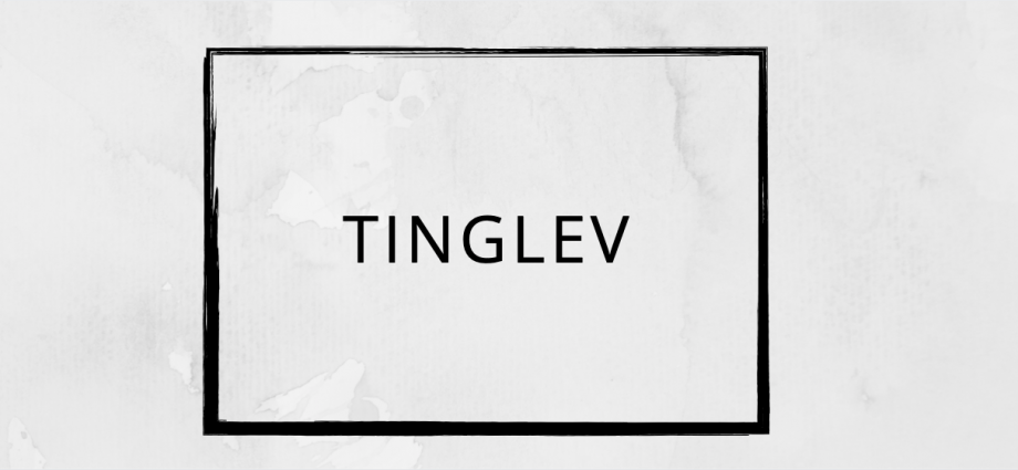 Pizza tilbud Tinglev
